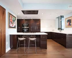 dark wood kitchen cabinets dark wood kitchen cabinets houzz