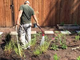 Rock Dust Gardening Gardening Dr Naumes Holistic Wellness