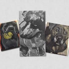 animal crackers pet shop u0026 grooming home facebook