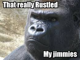 Gorilla Warfare Meme - gorilla warfare meme best chimpanzee and gorilla image and photo