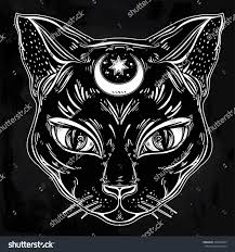 black cat head portrait moon ideal stock vector 479229844