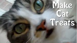 Diy Dog And Cat Treats by How To Make Cat Treats Easy Homemade Recipe Youtube