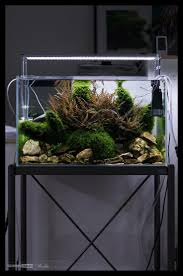 159 best aquascaping nano aquariums images on pinterest
