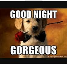 Www Meme Generator - good night gorgeous meme generator net meme on me me