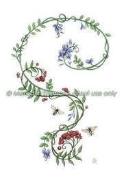 Flowers On Vines Tattoo Designs - vine tattoos google search tattoo pinterest vine tattoos