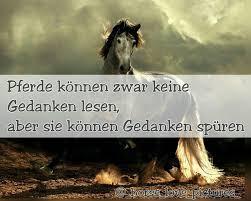 pferdesprüche images about pferdesprueche tag on instagram