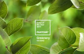 greenery il colore pantone per il 2017