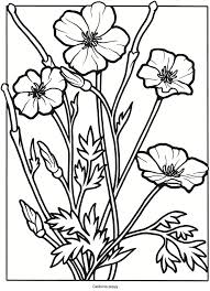 778 best coloring pages images on pinterest coloring books