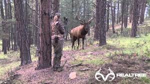 M El K He 15 Yard Files Female Bowhunter Stares Down Giant Bull Elk At 4
