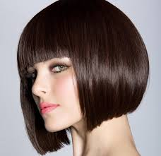 hair color trend 2015 women s hairstyles chocolate brown hair color highlight for thick
