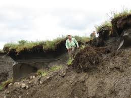 Alaska Fires Permafrost by Tundra Fires Fire Science Highlights Blog