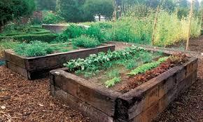 unique raised grow beds raised beds gardensdecor com