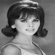 5 facts about 1960 hairstyles coolest 1960s hairstyles for women hairstylesco