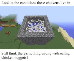 Meme Minecraft - look at the conditions these chickens live in still think there s