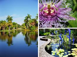 Fairchild Botanical Garden by Chic City Guide Local Leticia Herrera U0027s Miami U2013 Inside Chic