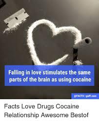 Cat Cocaine Meme - 25 best memes about cocaine cocaine memes