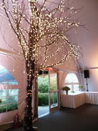 lighted tree branches remarkable ideas lighted tree home decor lighted tree branches