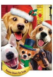 merry christmas to zoo nobleworks by design jumbo christmas card