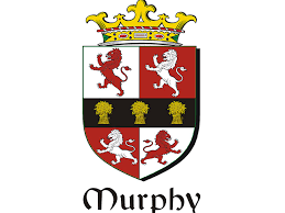 tracing your ancestry the murphy clan ancestry genealogy