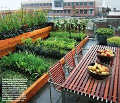 urban rooftop potager small garden ideas pinterest rooftop