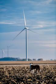 Ballard Power Systems Volkswagen Volkswagen To Buy Power From La Bufa Wind Farm In Mexico