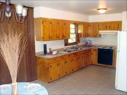 100 small kitchen remodel cost kitchen luxurious galley