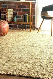 Large Indoor Outdoor Rugs New Large Outdoor Rugs Cheap Startupinpa