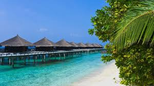beaches tropic bungalow sea palms hotel beach bungalows tropical