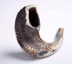 kosher shofar 25 best shofars images on auction antlers and horn