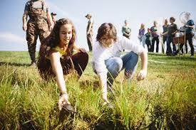 environmental studies major hollins university