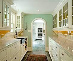 Galley Kitchen Designs Ideas Kitchen Design Ideas For Galley Kitchen Photo Qgde House Decor
