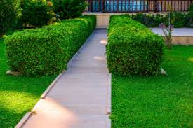 Simple Curb Appeal - simple but effective ideas to enhance curb appeal real property