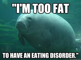 Eating Disorder Meme - i m too fat to have an eating disorder eating disordered