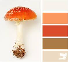 mushroom hues hue mushrooms and colors