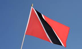 Flag For Trinidad And Tobago Hand Waving Flag Trinidad And Tobago 12x18