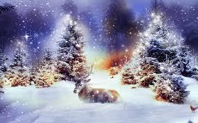 winter christmas photos design decoration