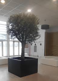 planter tree tub for indoor by image in