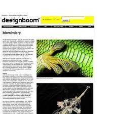 design inspiration nature biomimicry finding design inspiration in nature pearltrees