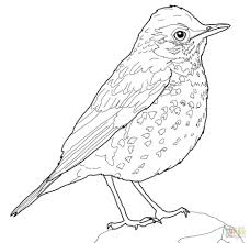 articles with bird coloring sheets free printable tag bird