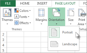 print a worksheet in landscape or portrait orientation excel