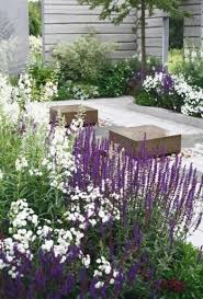 Garden Flowers Ideas 25 Best Ideas Of Modern White Garden Flowers