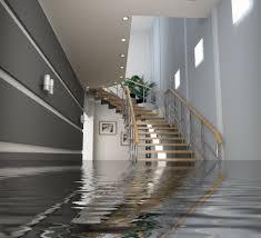 first steps after a basement flood