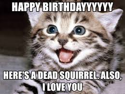 Dead Squirrel Meme - happy birthdayyyyyy here s a dead squirrel also i love you