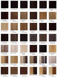 raw hair dye color chart brunette hair color chart http www haircolorer xyz brunette