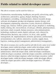 Job Developer Resume Sample by Top 8 Siebel Developer Resume Samples