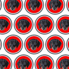 soccer wrapping paper premium gift wrap wrapping paper roll dog puppy ebay
