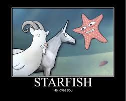 Starfish Meme - starfish aeb77b 778605 jpg