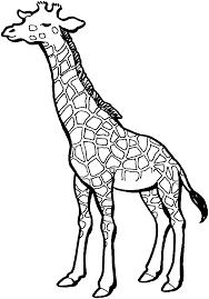 black giraffe clipart clipartxtras