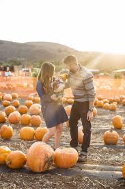 pumpkin patch maternity augustine s time at the pumpkin patch m m