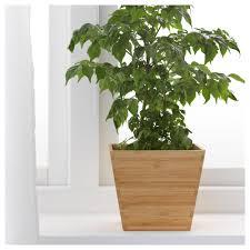 Ikea Plant Ideas by Vildapel Plant Pot Ikea